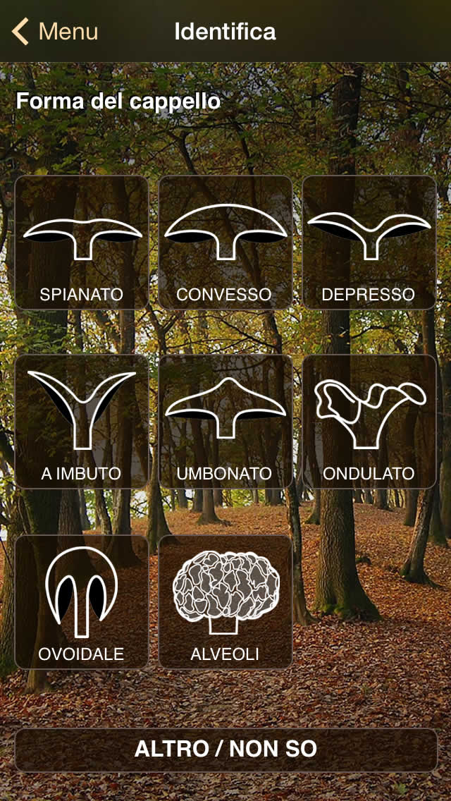 ifunch_sshot_it_2