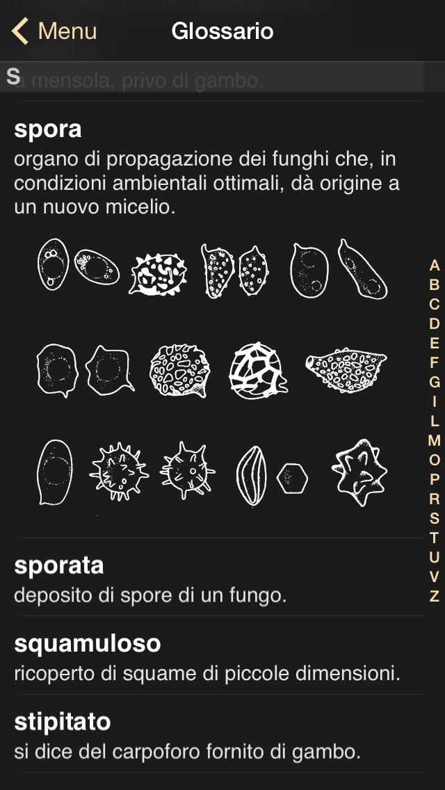 ifunch_sshot_it_4b