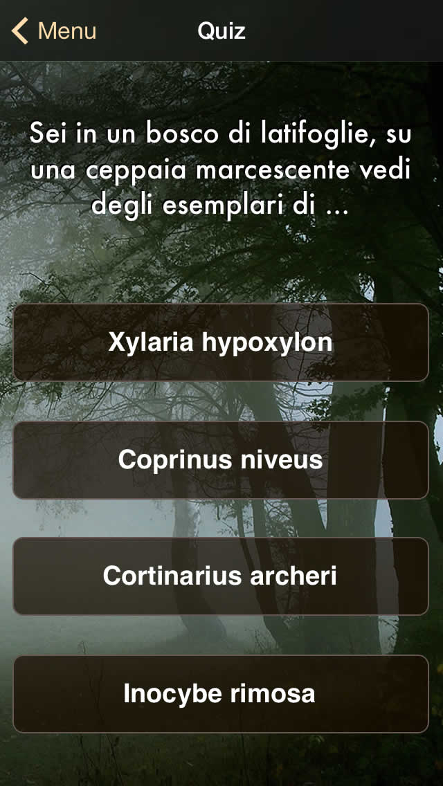 ifunch_sshot_it_5